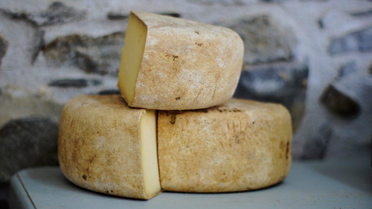 کشف پنیر ۳۲۰۰ ساله در مصر