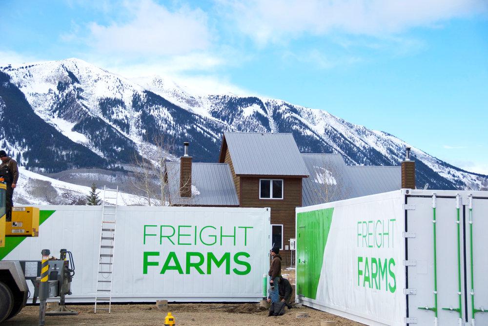 مزارع عمودی هیدروپونیک به مدارس آمریکا راه پیدا می کنند