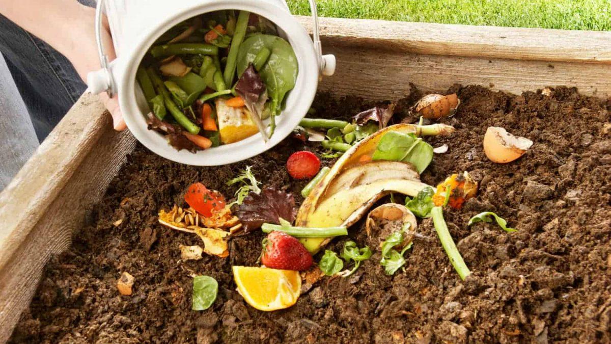 توجه دنیا به نوآوری و بکارگیری روشهای جدید جهت کاهش پسماند غذایی