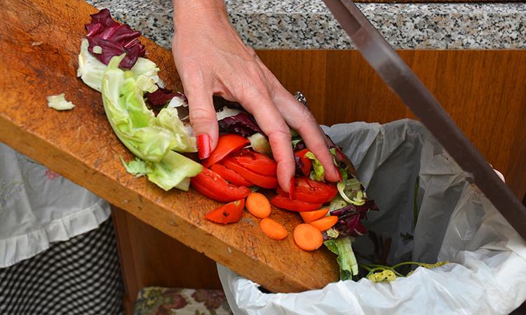 تحقیقات سازمان ملل در مورد اتلاف مواد غذایی بیش از ۹۰۰ میلیون تن در سال و تبعات آن